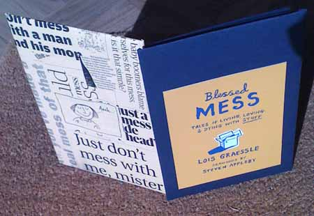 Blessed Mess - Promotional Booklet made by Lois with Steven Appleby's cover design