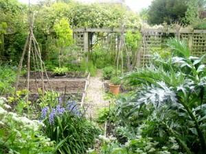 18-05-15 garden1-72