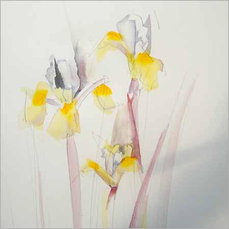 18-06-15 iris painterly72