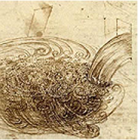 25-06-72 Leonardo4