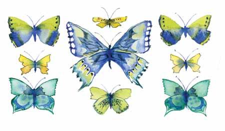 28-08-15 Butterflies