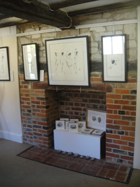 Exhibition Wantage 2015-7-72