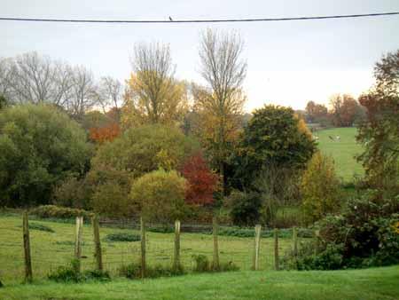 20-11-15 Autumn72