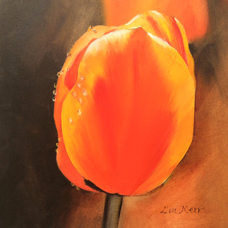 Tulip for Mum