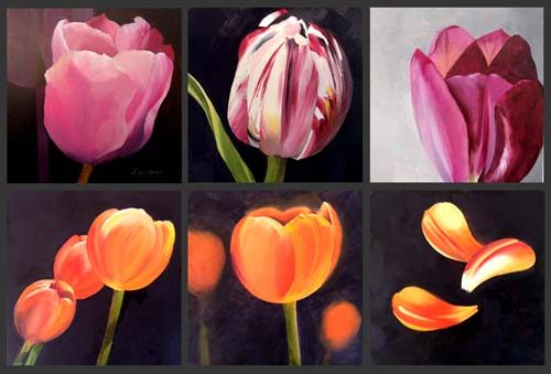 July - tulips