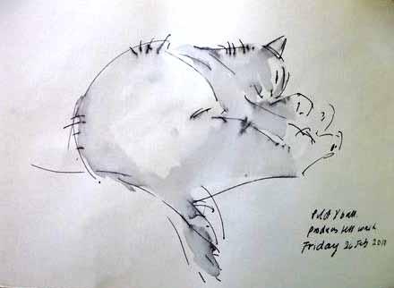 Marianne - Cat