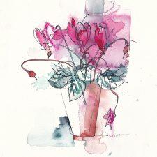 Q044-Hot-Pink-Cyclamen-72