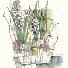 R052-White-Hyacinths72
